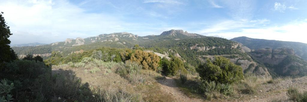 Panoràmica cims de la serra l'Obac des dels peus del Paller Tot l'Any