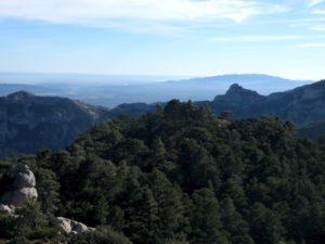 Joan Gran i el Montsià i el Delta