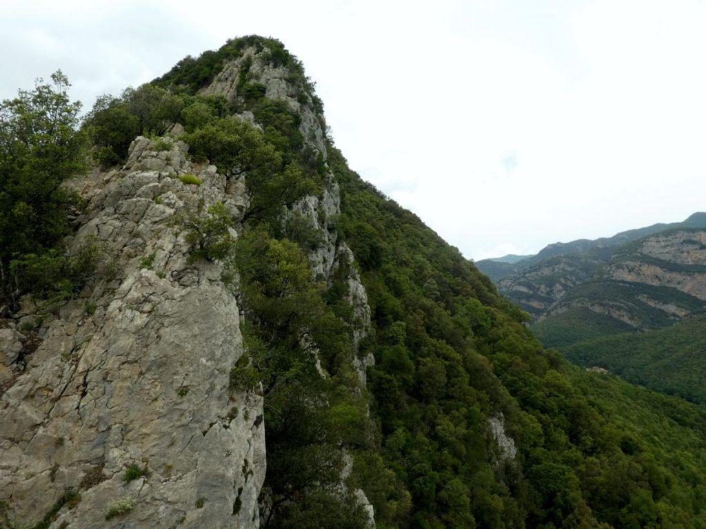 Cresta del Gall