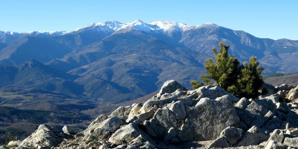 Els Pirineus nevats des del Costabona al Canigó